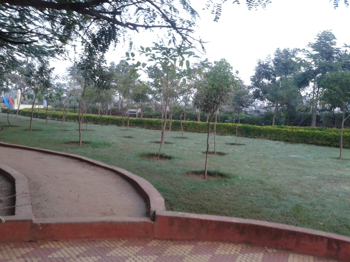 The park, early in the morning.