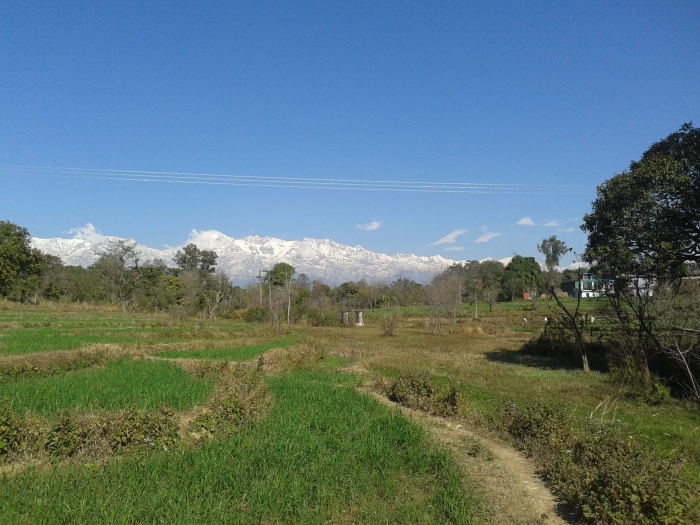 A view of the Himalayas from the village of Sunhi.