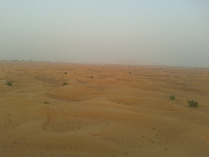 The Arabian desert, extending till the horizon.
