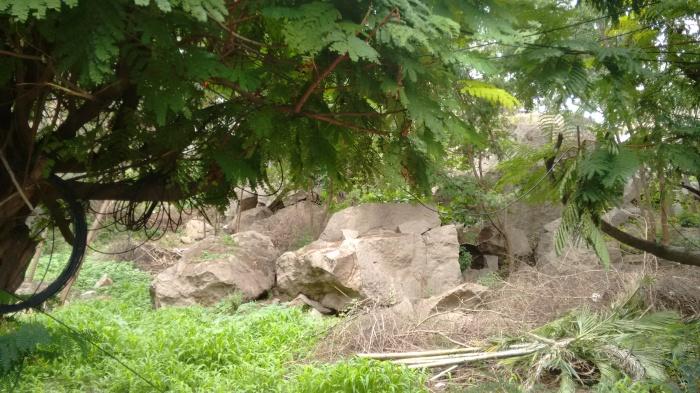 Some more rocks