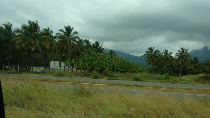 On way to Palakkad